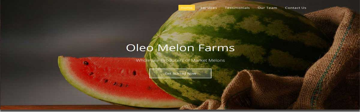 melon website image